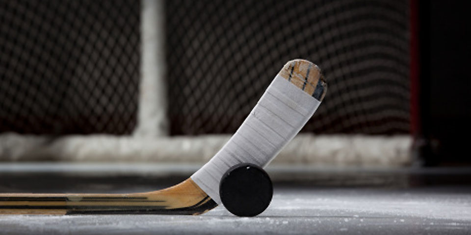 Descriptive essay hockey game